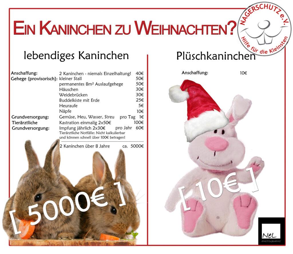 KaninchenZuWeihnachten