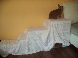 Aneinander geklebte Kartons können prima mit Stoff überzogen werden und dienen so als Rückzugsmöglichkeit oder zum besseren Aufstieg aufs Sofa ;)