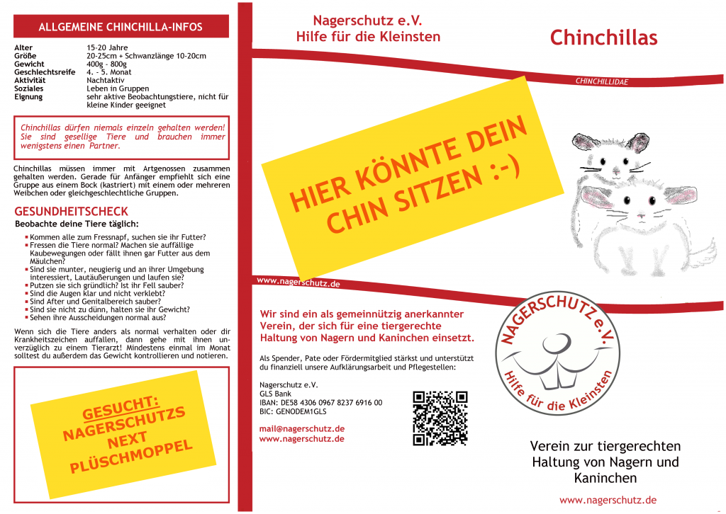 BlogFlyerChinchillaVorderseite